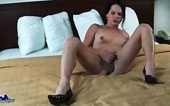 Naughty transsexual brunette Gina Hart is fondling herself.